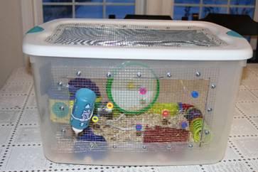 контейнер для хомяка