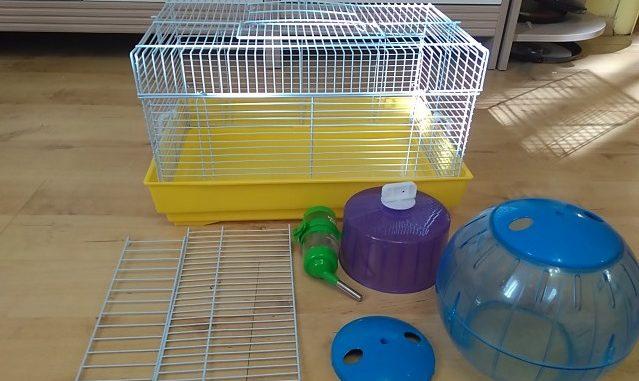 Аксессуары для крысы