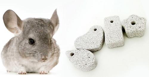 Шиншилла и минеральные камни