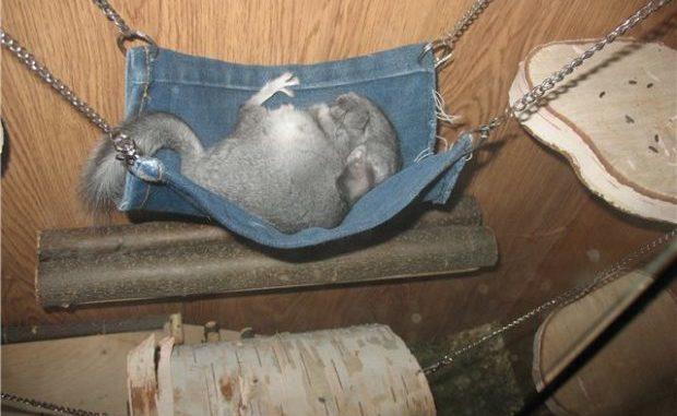 Гамачок из джинсов