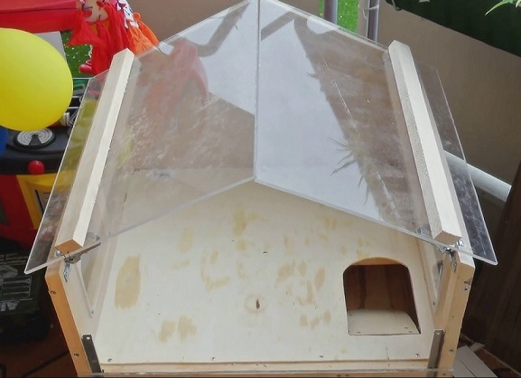 Строительство клетки для морской свинки: делаем крышу