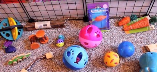 Готовые игрушки для морской свинки