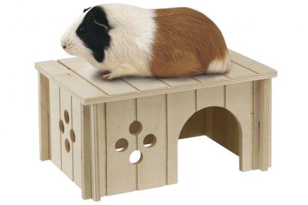 Домик для свинки