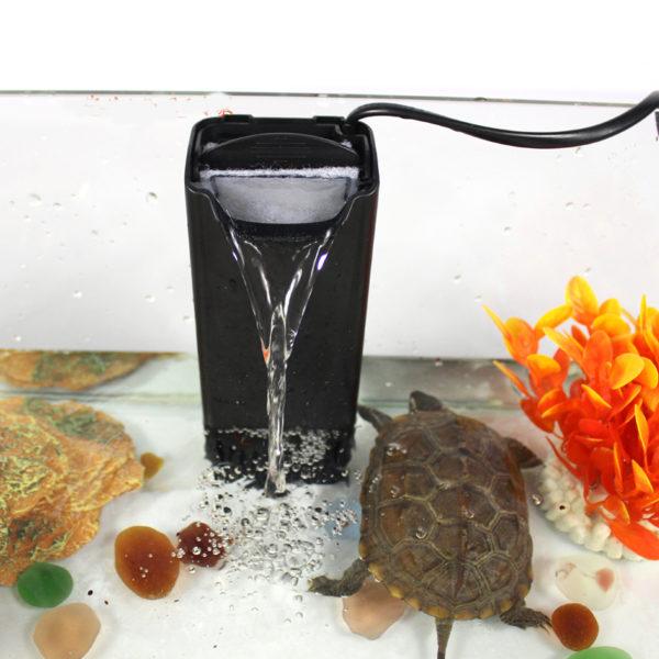 Фильтр в аквариуме с черепахами
