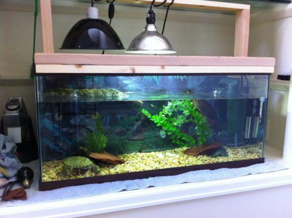 Уф-лампы для аквариума