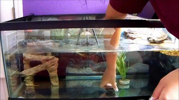 Расставляем по местам аксессуары для аквариума