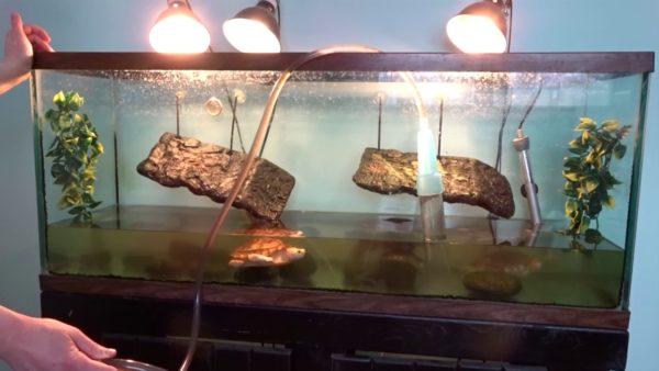 Слив воды из аквариума при помощи сифона
