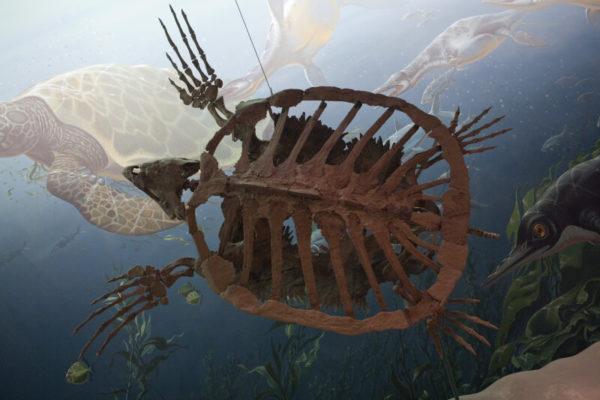 Доисторический океан
