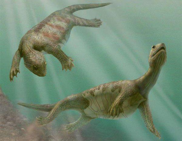 Эунатозавры