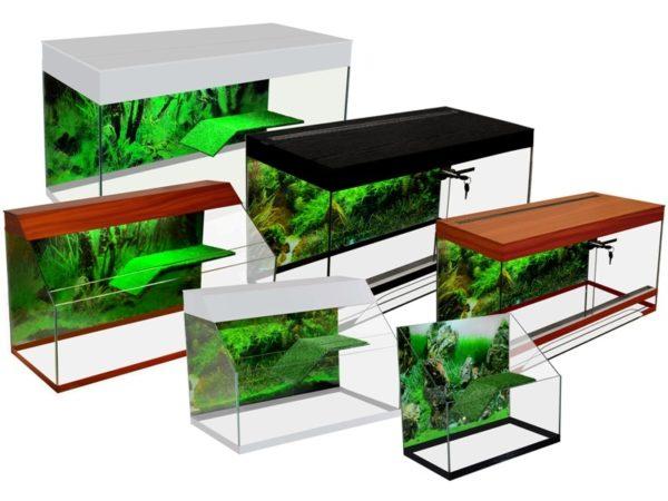 Размеры аквариумов для красноухой черепахи