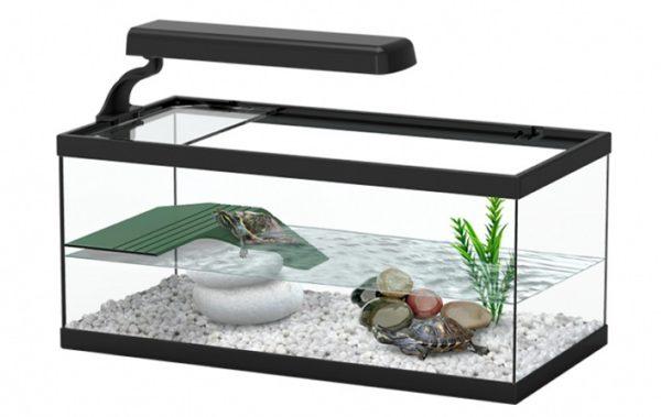 Акватеррариум для водных черепах