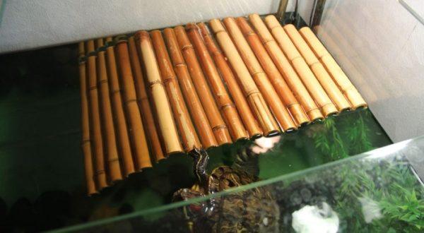 Плотик из бамбука своими руками для красноухой черепахи