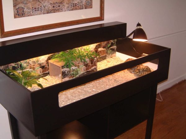 Террариум для черепах на тумбочке своими руками