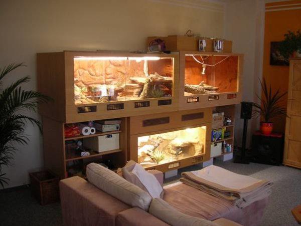 Встроенный в шкаф террариум для черепах своими руками