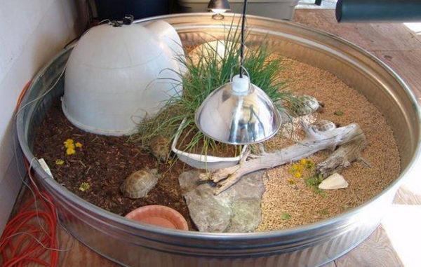 Напольный террариум-загончик для черепахи своими руками