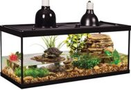 Грунт и растения для аквариума